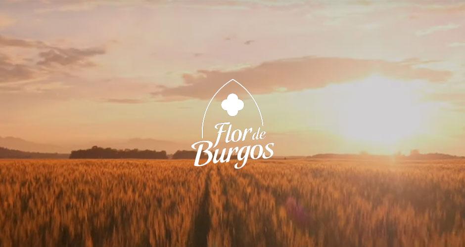 Capsa Food acquires 50% of Lácteas Flor de Burgos SL